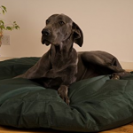 unchewable dog bed