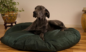 Unchewable Dog Bed For Your Dog! 12 Best Dog Beds!