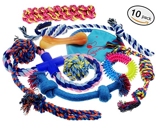 toughest dog chew toy Lobeve Dog Toys 10 Pack